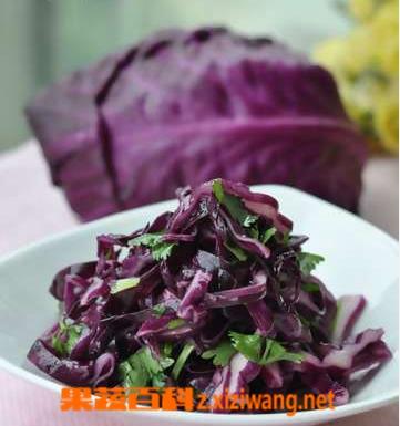 果蔬百科凉拌紫甘蓝的做法步骤
